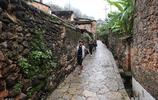 雲南發現3億年前化石村,遊客視為無價之寶,專家認為無收藏價值