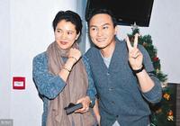 40萬1平!結婚16年一直不買房的張智霖袁詠儀,為什麼改主意了?