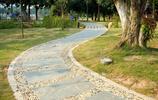 風景圖集:江蘇有多美系列之石路