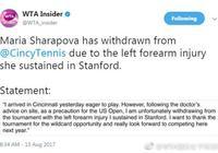 莎娃因傷退出辛辛那提賽 北美三連退美網成疑