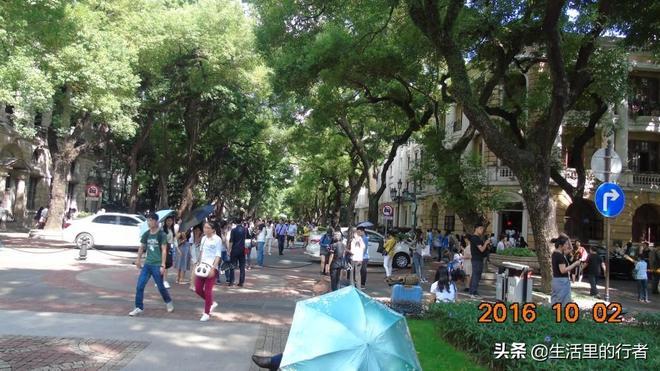 廣州沙面公園:翻開老照片,才發現已是三年前了