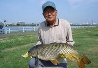 想要釣鯉魚,先要了解鯉魚的習性:老大爺教你認識鯉魚