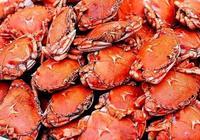 秋季螃蟹如何挑選螃蟹 秋天怎麼吃螃蟹最養生