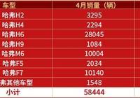 """""""超級爆款""""哈弗H6豪取71冠,哈弗銷量同比增長6.16%"""