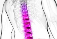 養生館的背部按摩真的能治病嗎?