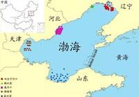 中國渤海海鮮圖鑑