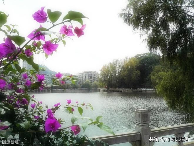 花、流水,美景如畫