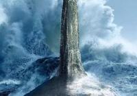 虎鯨的新食譜:大白鯊