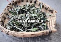 安吉白茶和福鼎白茶,哪一個才是正宗的白茶?