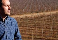 西班牙葡萄酒的新浪潮-La Mancha