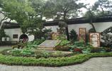 中國園林之母拙政園
