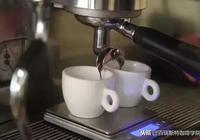 濃縮咖啡的正確品鑑方式