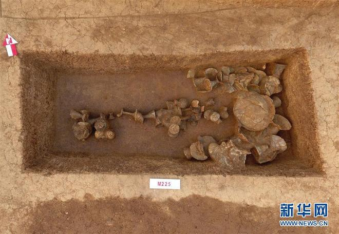 中國社會科學院揭曉2018年中國考古新發現