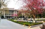 安徽最美高校之安徽農業大學