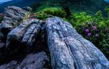 領略壯觀的自然:絕頂之上指點江山