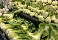 推薦營養最佳的十種綠葉蔬菜
