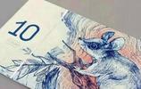 如果鈔票被設計成這樣,你還會捨得用它消費麼?防偽炸天了