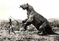一把1.2萬年前的刀證明:人類曾獵殺巨型樹懶