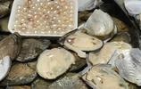 南方小夥長春街頭擺攤現場加工貝殼珍珠,日賺千元