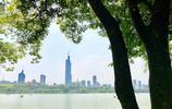 夏風長,花沁香,時下漫步玄武湖,你會看見六朝古都最美的風景。