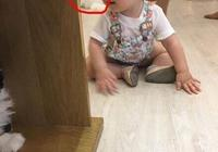 喵星人也怕熊孩子 當家裡來小孩子的時候貓選擇這樣做
