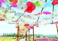 淮安首屆蝴蝶蘭博覽會