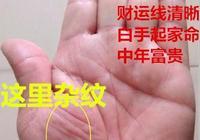 手相雜紋多,不見得不好,若這處雜紋多,反而是富貴命,富甲一方