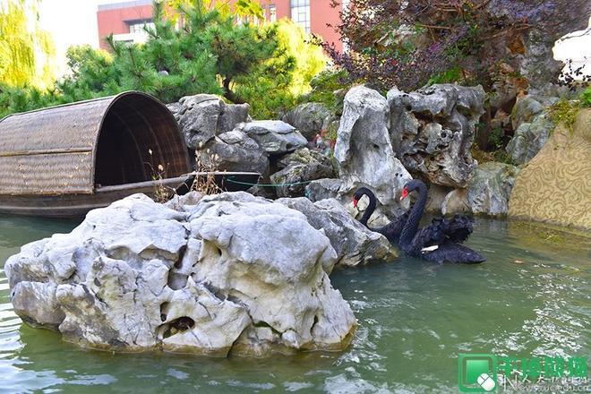 帶你領略中國大學之中國人民大學