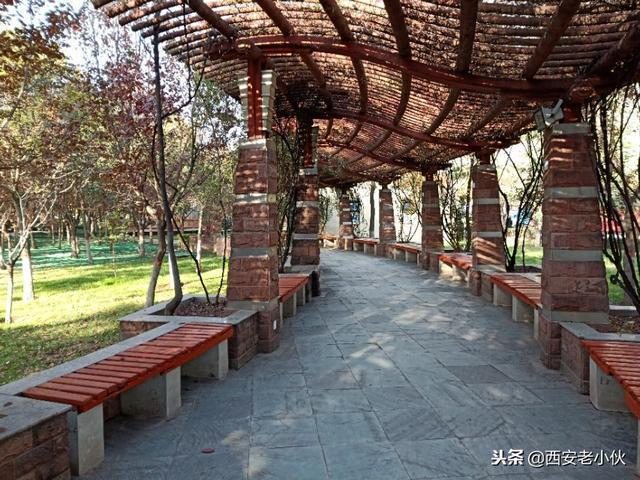 西安鬧市中的小公園