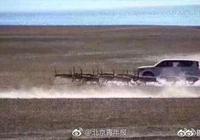 越野車追趕藏羚羊事件中,開越野車的是些什麼人?