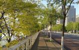 天津的母親河——海河