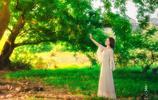 林中女孩,如夢如幻的美麗