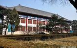 小胖鏡頭下的北京大學