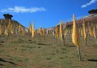 日月山:因文成公主進藏和蕃的故事而聞名天下
