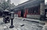 這座寺廟裡竟然養了孔雀,廟裡鳥語花香,真是大隱隱於市