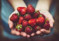 生活中有哪些水果是鹼性水果?