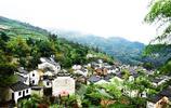 除了婺源和羅平,還有這個小村莊可以觀賞油菜花,你知道在哪嗎