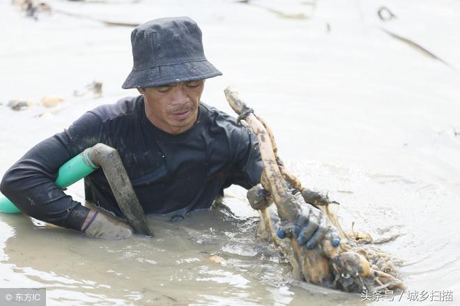 餓死也不掙這錢,那是你有其他掙錢門徑,無一技之長的農民工得掙