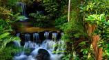 去南崑山遊玩汩汩溪流,形成小瀑布,這些來自山澗的水,清澈冰涼