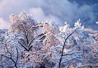 情感測試:你最喜歡哪張雪景圖?測試目前有沒有人正在愛著你