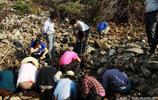 實拍偏遠農村發現大量古錢幣,專家迅速趕到現場收繳,保護文物