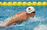 游泳——全國游泳冠軍賽開賽