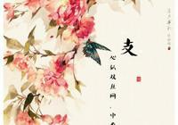 百家姓風景壁紙,花開花落,緣起緣落