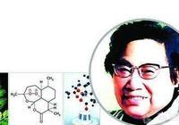 青蒿素是中藥,還是西藥?屠呦呦是用乙醚低溫提取出來的,你覺得古人能提煉出青蒿素嗎?