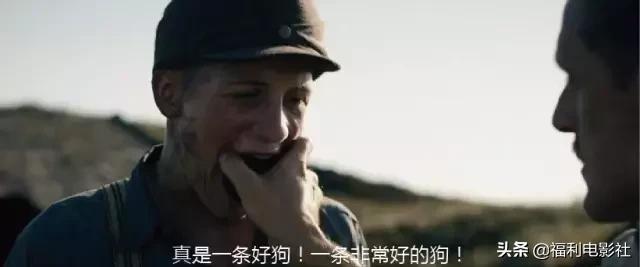 不要天天把開戰掛在嘴邊,你熱愛戰爭的最大原因就是沒經歷過戰爭