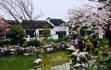 古老的城中村座落在無錫太湖新城內,古村景色古色古香美景如畫