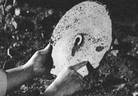 巴顏喀拉山神祕的外星石蝶,外星人一萬年前已經探測過這裡?