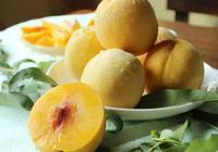 炎陵黃桃多少錢一斤