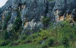 神奇的雲南石林
