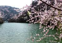 4月到了,有想去旅遊的地方嗎?我和大家分享7個好去處!